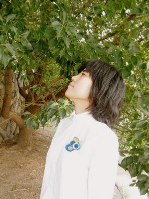 20120822.JPGのサムネール画像
